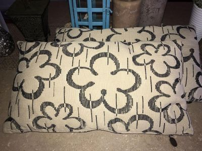 Set of 2 Pier One Pillows