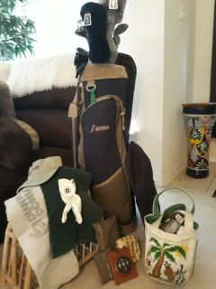 ladies golf clubs with TONS of accessories incl 60 balls and adorable bag