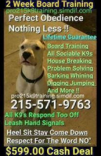We Train All Breed Canines