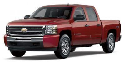 2009 Chevrolet Silverado 1500 Work Truck (Silver Birch Metallic)