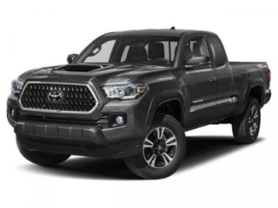 2019 Toyota Tacoma TRD Sport (CEMENT)