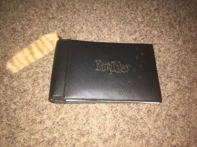 Kitty tales scrap book album for you kitty pictures