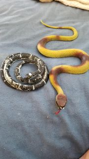 2 rubber snakes