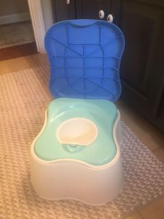 Safety 1st 3 in 1 potty and step stool