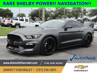 2017 Ford Mustang Shelby GT350 (Magnetic)