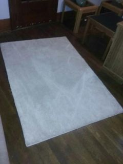 4 by 6 area rug