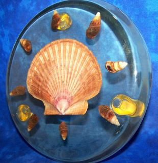 KITCHEN TRIVET... Vintage 1970s Acrylic with Real Seashells