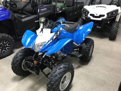 2019 Honda TRX250X ATV Sport Corona, CA