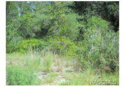 7147 E Leaning Oak Drive Inverness, Waterfront lot in homes