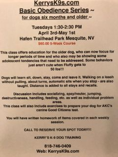 Kerrys K-9s Dog Training Service