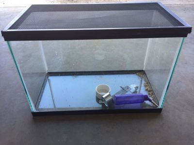 20 Gallon Fish or Retile Tank