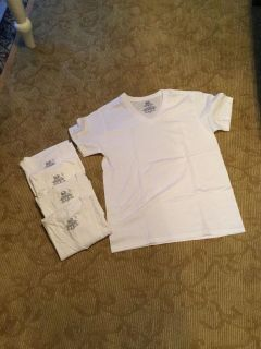 Fruit of the Loom v neck T-shirt. PPU