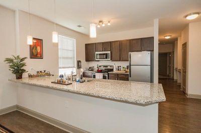 811 East Luxury Apartment Sublease