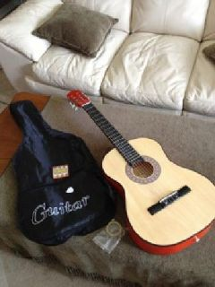 $40 Good beginner acoustic guitar with nice cloth case