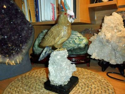 Gorgeous and Beautiful Natural Aragonite Gemstone Cockatoo Bird Carving