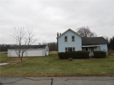 4 Bed 2 Bath Foreclosure Property in Akron, NY 14001 - Mann Rd