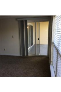 Pet Friendly 3+2 Apartment in Orange Park