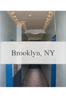 1 bedroom Apartment - The Williamsburg neighborhood is now the epicenter for New York's art.