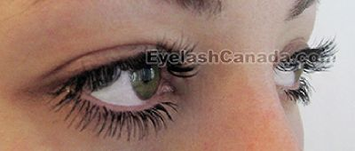 Low Cost Intensive Online Eyelash Extensions Training Program