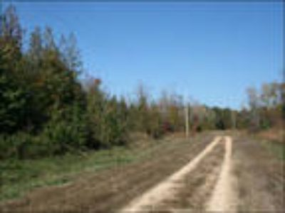 Tennessee Land For Sale 5 Acres, Power,Secluded.Woods