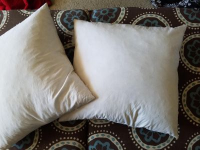 """Down throw pillow inserts 19""""x19"""""""
