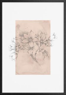 Botanical 2 Art Print
