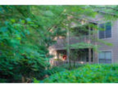 Park Trace Apartments - The Ellington