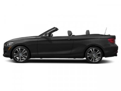 2019 BMW 2 Series 230i xDrive (Black Sapphire Metallic)