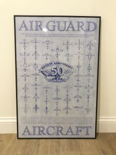 Airplane Air Guard 50th Anniversary Picture