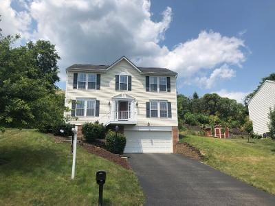 4 Bed 2.5 Bath Preforeclosure Property in Elizabeth, PA 15037 - Cedar Dr