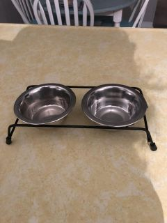 Kitten or small dog food dishes