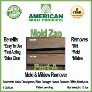 GREEN: Commercial Mold Removal & Prevention Product: