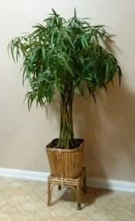 TALL/ARTIFICIAL/ BAMBOO TREE.......EXCELLENT USED CONDITION