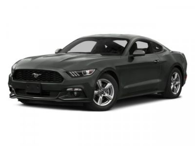 2015 Ford Mustang EcoBoost ()