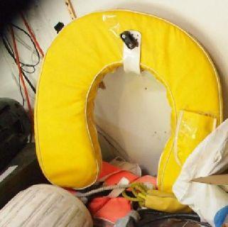 $65 Horseshoe Buoy - Safety Gear