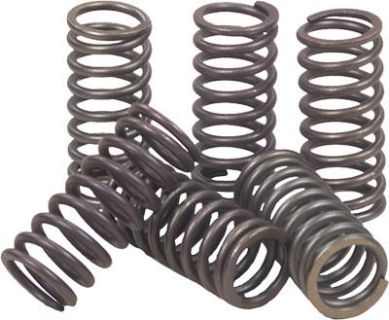 Sell 08-11 Kawasaki EX250R Ninja 250R EBC Motorcycle Hi-Po Clutch Spring Kit - CSK142 motorcycle in Loudon, Tennessee, US, for US $12.06