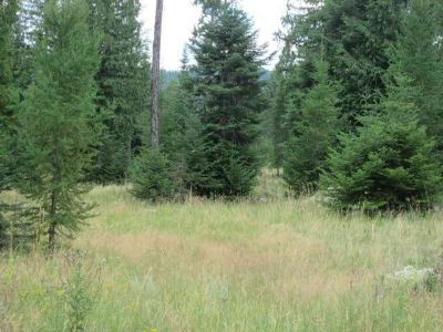 700-750 Finley Gulch Rd Colville, 5.45 surveyed acres.