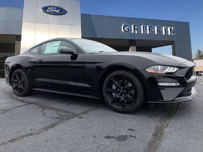 2019 Ford Mustang GT Premium (Shadow Black)