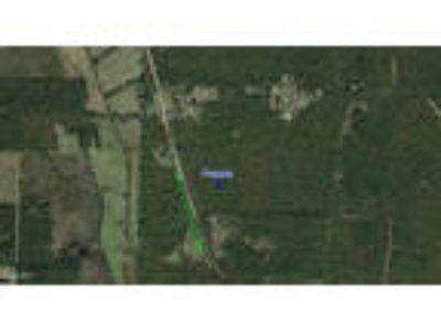(3) Quiet Country Wooded Lots