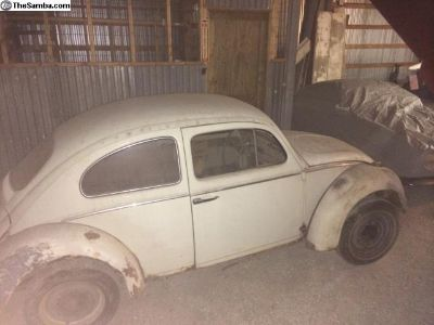 1961 BUG GOOD PROJECT CAR