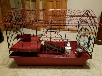 Guinea Pig Cage (All Living Things) - Very Good Condition