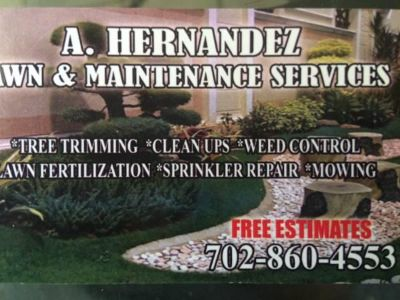 A.Hernadez lawn care services 60$ front yard clean up