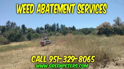 Bobcat Mowing Weed Abatement in Murrieta