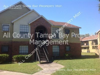 Stunning, spacious 1 bdrm Tampa condo near Dale Mabry and downtown Tampa
