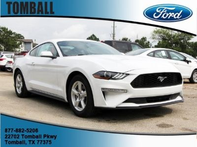 2019 Ford Mustang EcoBoost Premium (Oxford White)