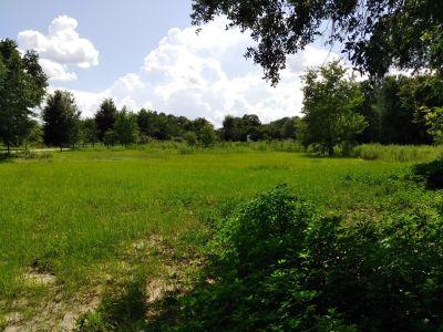 Beautiful Lot Land in Summerfield