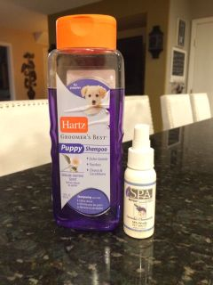 Puppy Shampoo + Spa Lavender Pet Spritz