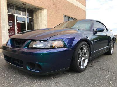 2004 Ford Mustang SVT Cobra (Mystichrome)