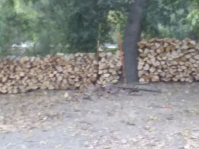 Red Oak Firewood