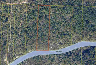 4.15 acres Walthall Road Crestview, 4.15 wooded acres with
